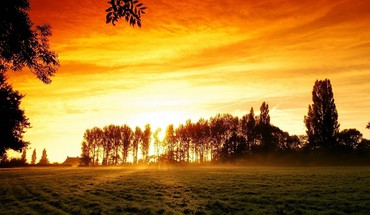 Light steam landscapes nature trees orange glow land HD wallpaper