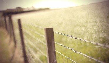 Barbed wire depth of field fences nature HD wallpaper