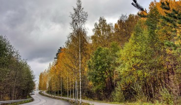 Landscapes nature trees roads autumn HD wallpaper
