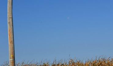 Autumn (season) moon corn blue skies telephone pole HD wallpaper
