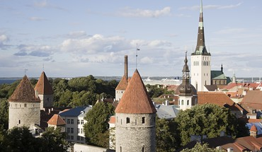 Trees cityscapes architecture day europe tallinn HD wallpaper