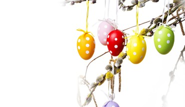Twig easter eggs  HD wallpaper