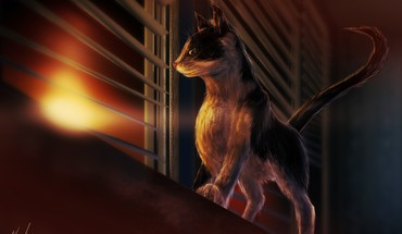 Sunset cats drawings windows HD wallpaper