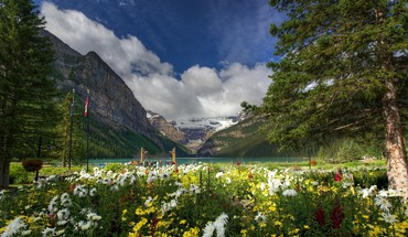 Lake louise banff national park HD wallpaper