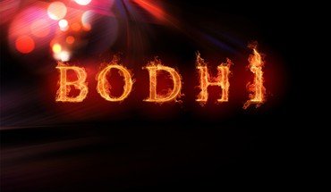 Bodhi linux flames HD wallpaper