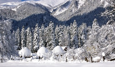 Mountains winter snow trees forest HD wallpaper