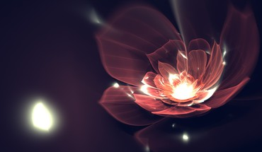Flowers fractals digital art HD wallpaper