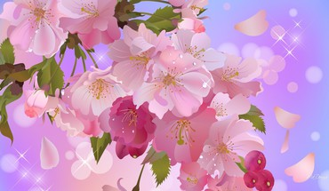Apple blossoms sweet HD wallpaper