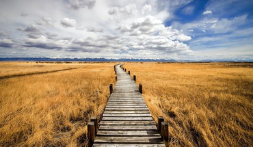 Boardwalk on grassy wetlands the prairie HD wallpaper