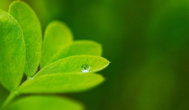 Abstract drop macro water HD wallpaper