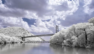 Bridge over white trees along a river HD wallpaper