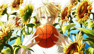 Boys sunflowers kuroko no basket kise ryouta HD wallpaper