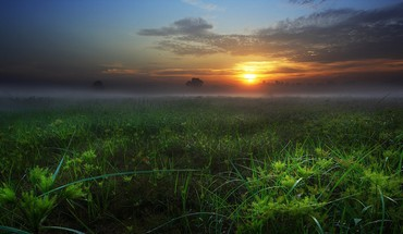 Sunset on a misty field HD wallpaper