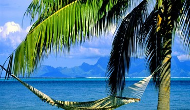 Inviting hammock HD wallpaper