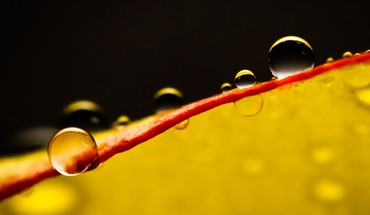 Waterdrops ix HD wallpaper