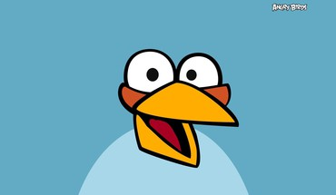 Angry birds blue simple background HD wallpaper