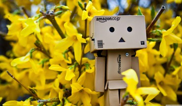 Danboard abstract amazon spring time HD wallpaper