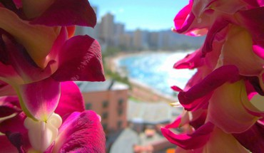 Hotel through orchid lei view vista island HD wallpaper