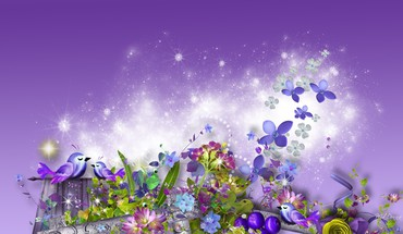 Lavender summer dreams HD wallpaper