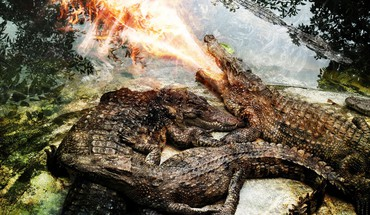 Fire crocodiles reptiles photomanipulation HD wallpaper