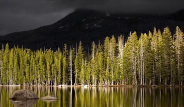 Landscapes nature trees forests lakes selective coloring HD wallpaper