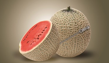 Zippered melon HD wallpaper