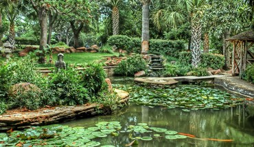 Exotic pond garden HD wallpaper