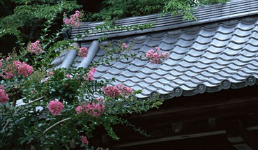 Japan flowers spring (season) asian architecture roofs HD wallpaper
