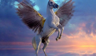 Creatures mythical pegasus white HD wallpaper