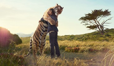 Animals fields hugging love nature HD wallpaper