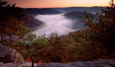 Landscapes forest red river foggy daniel boone national HD wallpaper