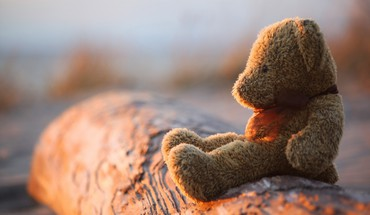 Teddy bears toys HD wallpaper
