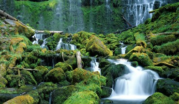 Proxy falls cascade range oregon HD wallpaper