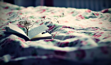 Trees birds beds books depth of field photomanipulation HD wallpaper