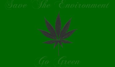 Environment green marijuana HD wallpaper