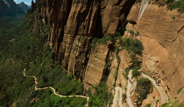 Cliffs plants utah national park zion trails HD wallpaper