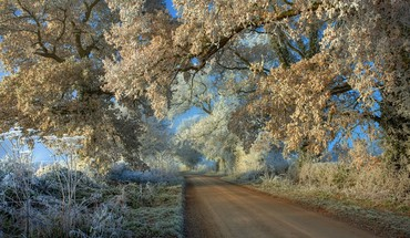 Amazin frosty road in the countryside HD wallpaper
