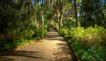 Mcclay gardens state park tallahassee florida HD wallpaper