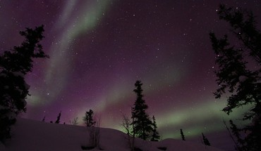 Landscapes nature snow trees aurora borealis national geographic HD wallpaper