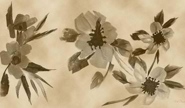 Flowers sepia digital art watercolor HD wallpaper