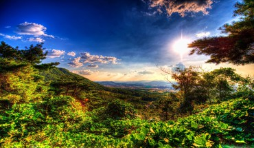 Landscapes nature forests distance valleys hdr photography HD wallpaper