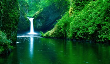 Waterfall forest background HD wallpaper