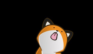 Vector funny stupidfox black background foxes HD wallpaper