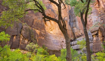 Utah zion nationale  HD wallpaper