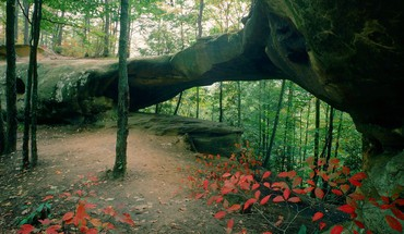 Stone arch in the forest HD wallpaper