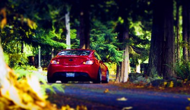 Forest cars HD wallpaper