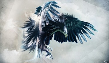 Eagles HD wallpaper