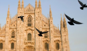 Italy pigeons cathedral HD wallpaper