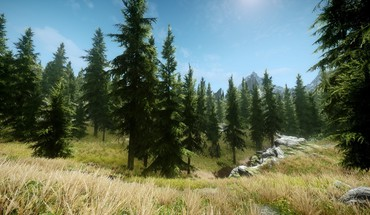 V: skyrim grass nature trees video games HD wallpaper