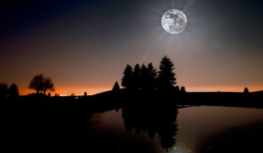 arbres Paysages lune silhouette  HD wallpaper